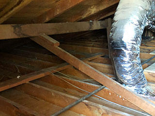 Crawl Space | Attic Cleaning San Jose, CA
